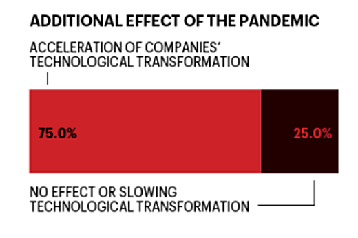 Fortune Demographic: Effects of Pandemic